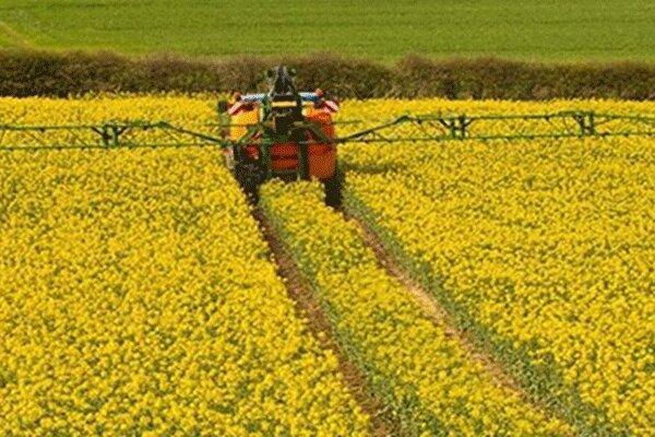 لزوم کاشت بذرهای مقاوم در مقابل کم آبی برای تقویت بخش کشاورزی ایلام