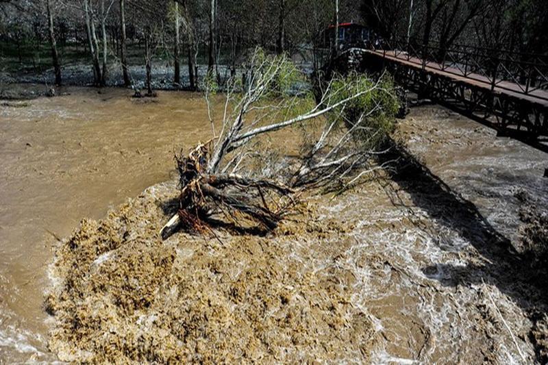 سازمان هواشناسی نسبت به سیلابی شدن رودخانه ها و مسیل ها هشدار دارد