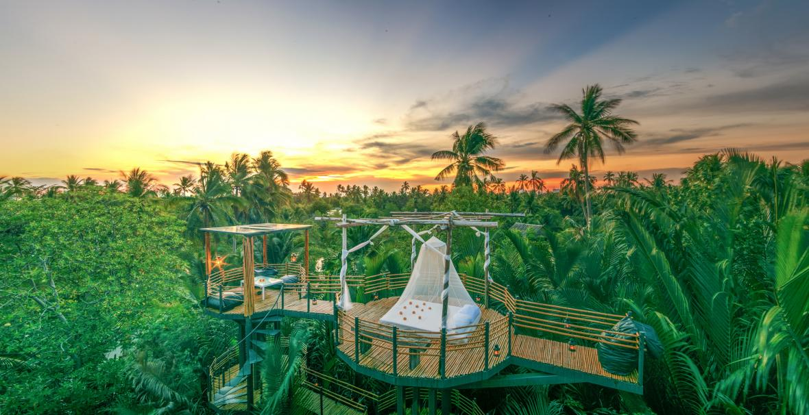 اقامت در هتل درختی بانکوک