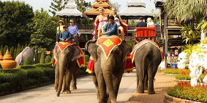 آشنایی با دهکده فیل ها در پاتایا
