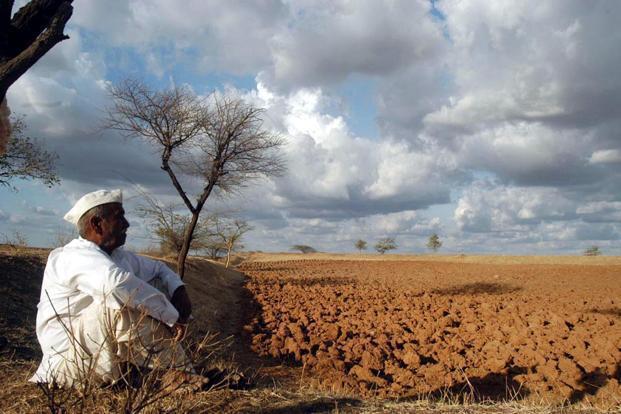 معلم بازنشسته ای که کارآفرین برتر شد ، فلاحی: کمبود آب کشاورزی باعث مهاجرت از روستا می گردد
