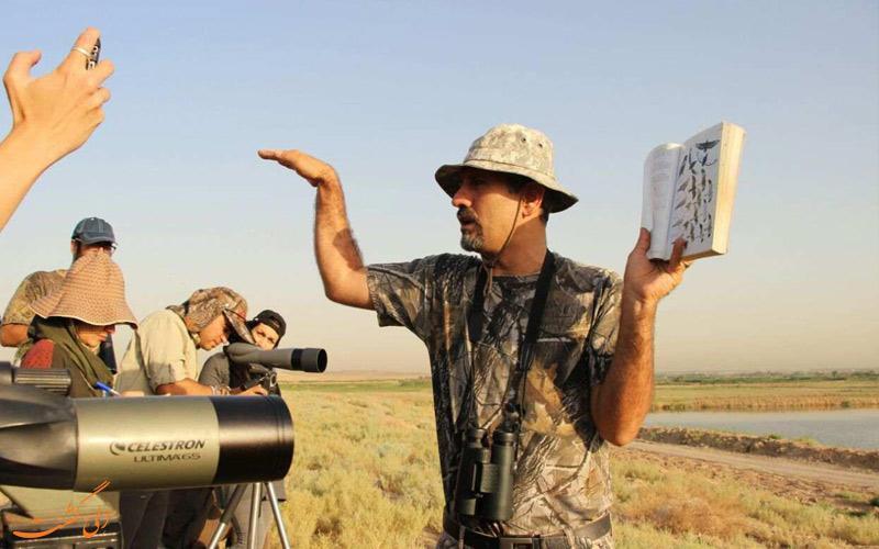 همه چیز درباره پرنده نگری در ایران