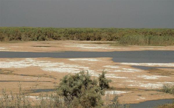 پنج میلیون متر مکعب آب هم وارد تالاب گاخونی نشده است
